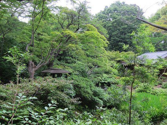 Gardens of Nezu Museum in Japan