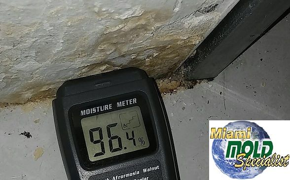 hen it has been determined that mold is present, our #certified #microbial #remediators main concern is the potential risk for excessive #mold #exposure. Mold counts in the air can be 10 to 1,000 times higher during a #remediation project. Therefore, we offer the following methods to maintain outstanding mold remediation performance:
