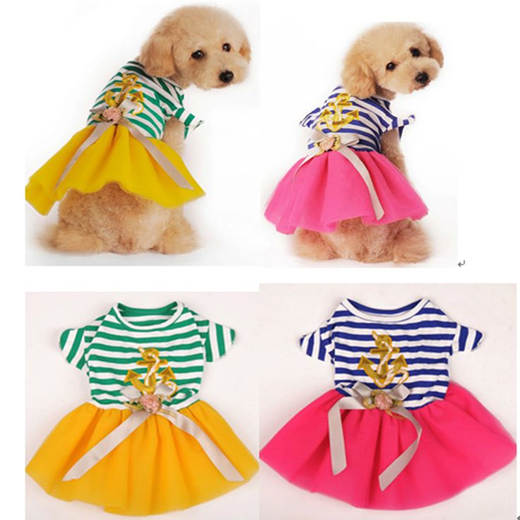 2016 Fashion Wedding Dress Dog Clothes British Striped Lace Dress small dog clothes for Chihuahua Yorkie Dog Clothing for Cats3 // FREE Shipping //     Buy one here---> https://thepetscastle.com/2016-fashion-wedding-dress-dog-clothes-british-striped-lace-dress-small-dog-clothes-for-chihuahua-yorkie-dog-clothing-for-cats3/    #catoftheday #kittens #ilovemycat #lovedogs #pup