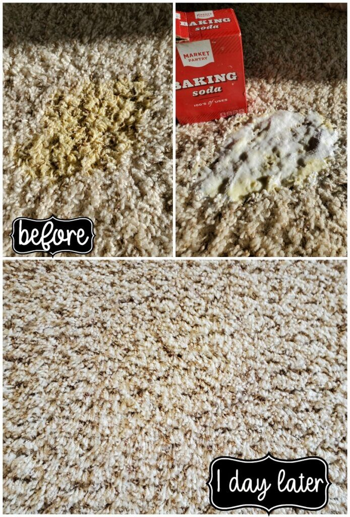 How To Remove Old And New Carpet Pet Stains In 2020 Carpet Stains Pet Cleaning Carpet Stains Stain Remover Carpet