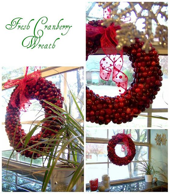DIY Cranberry Christmas Wreath