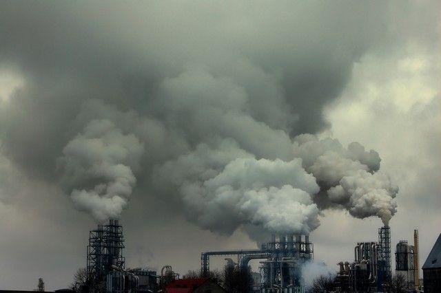 Resultado de imagem para florestas poluição industria