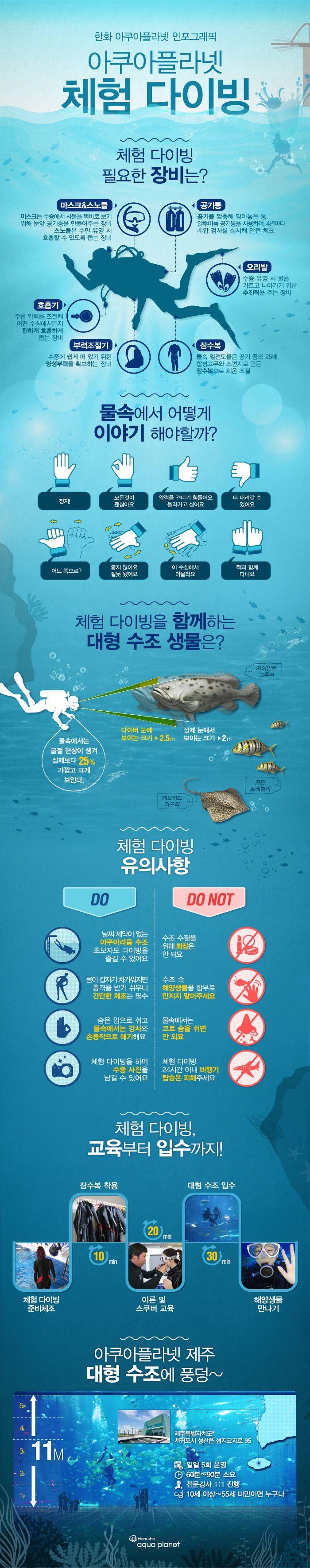 아쿠아플라넷 제주 체험 다이빙에 관한 인포그래픽