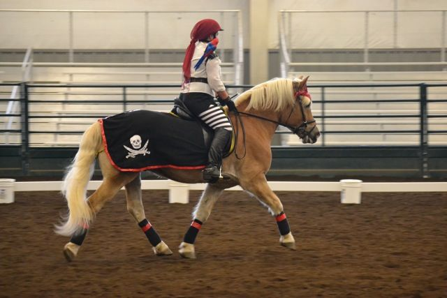 17 Best Images About Horse Costumes To Ride In On