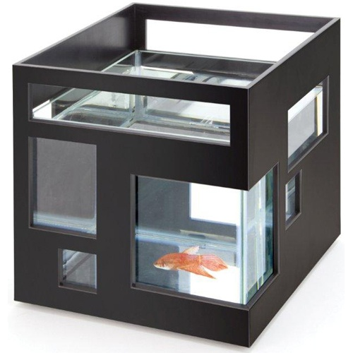 25 best ideas about modern fish tank on pinterest for Modern fish tanks
