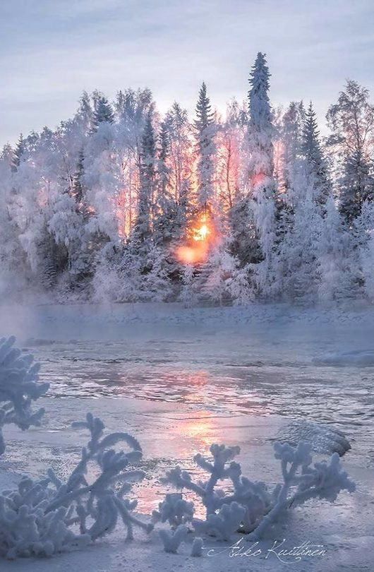 winter wonderland.. Lapland, Finland | by Asko Kuittinen