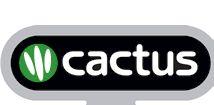 Cambridge CELTA 4-week Course Cape Town with CACTUS