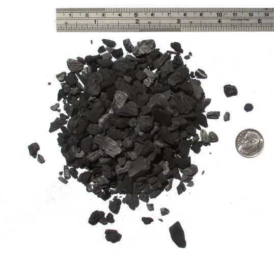Bulk Activated Charcoal for terrariums-1 pound bag of charcoal-soaps-Terrarium supplies-Garden supplies-Orchid supplies by…