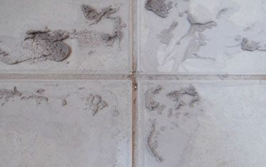 How to Remove Hard Grout from Tiles | Removing Cement Grout From Tiles  #diy #DIYDoctor