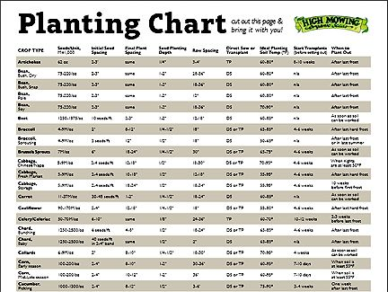 Similiar Seed Spacing Chart Keywords – Garden Planting Times