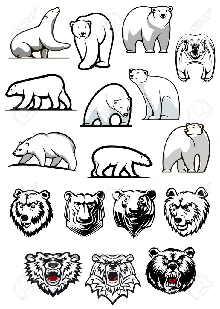 polar bear tattoo - Szukaj w Google