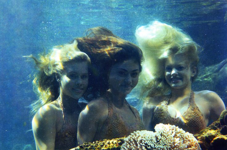 426 best h2o just add water images on pinterest h2o for Mako mermaids cleo
