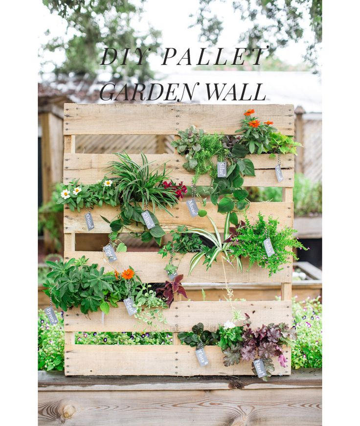 Diy Vertical Planter Garden Pictures Photos And Images: DIY Pallet Vertical Garden By Christy Hulsey Of Camp