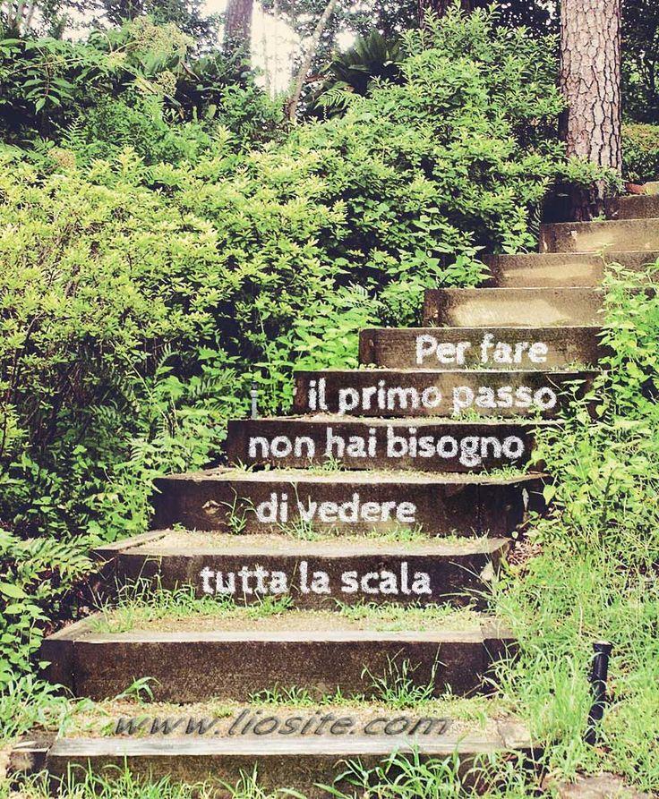 """Per fare il primo passo ... Non lasciatevi mai fermare, andate avanti fino a che avete un filo di fiato in corpo perché fermarvi, per paura, per pigrizia, per stanchezza… , equivale a morire. Non fatelo, non fatelo MAI! Di tutte queste """"frasi su fotografie"""" ne troverai in una sezione del mio Portfolio sia in Inglese che Italiane. Sezione: SENSIBILE ALL'INUTILE #GraphTag, #visualTag, #fotoParlanti, #citazioniFotografiche, #citazioniItaliane, #perledisaggezza, #liosite,"""