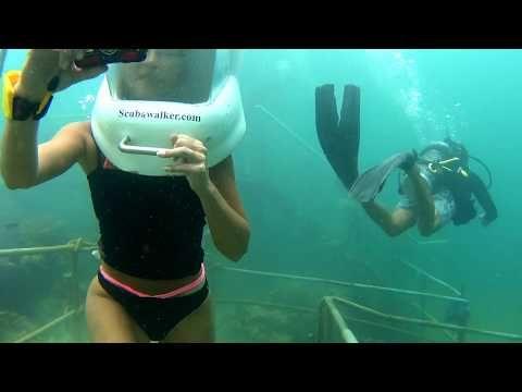 BORNEO REEF WORLD - Sea Walking - Borneo, Sabah, Malaysia - YouTube