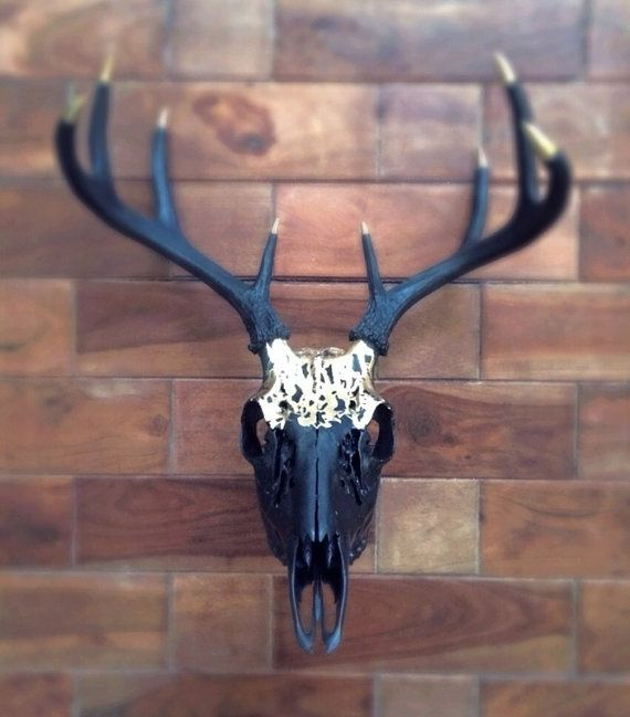 Painted 8 point Whitetail Deer Skull // Gold Matte by MyrandaE, $250.00