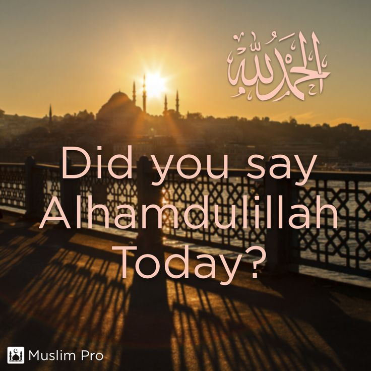 """Did you say  Alhamdulillah Today?  #muslimpro Optional(""""http://www.muslimpro.com/dl"""")"""