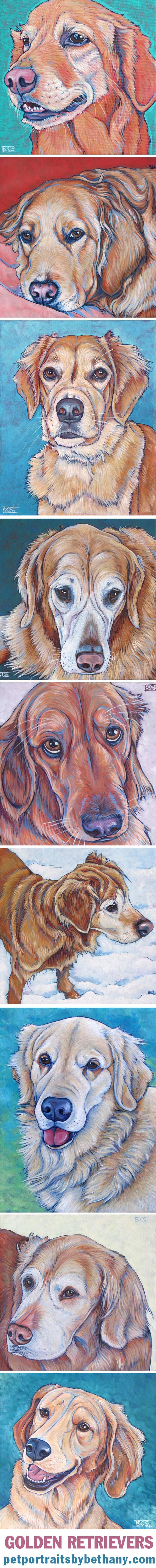 Golden Retriever Dogs by Bethany.