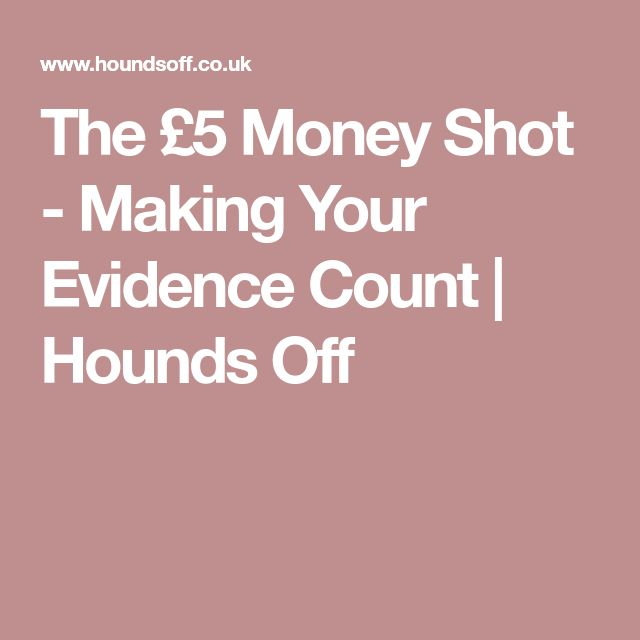 The £5 Money Shot - Making Your Evidence Count | Hounds Off