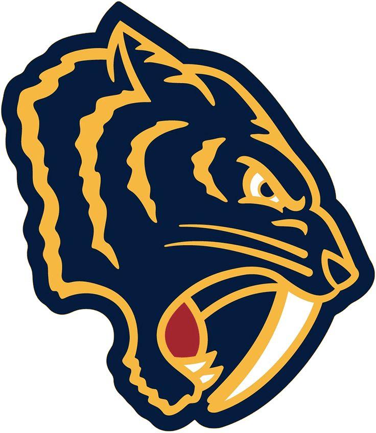 Nashville Predators Special Event Logo (2019/20