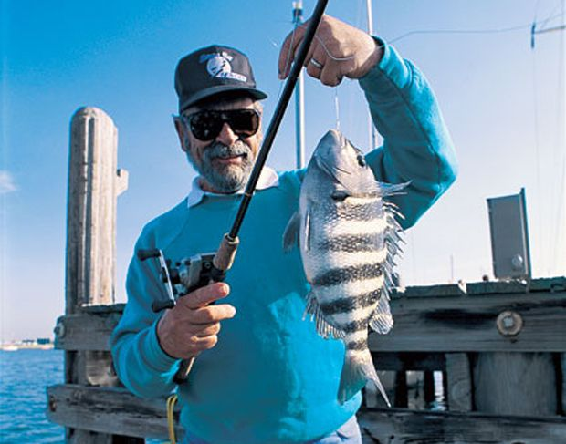 148 best images about inshore saltwater fishing on for Sheepshead fishing rigs
