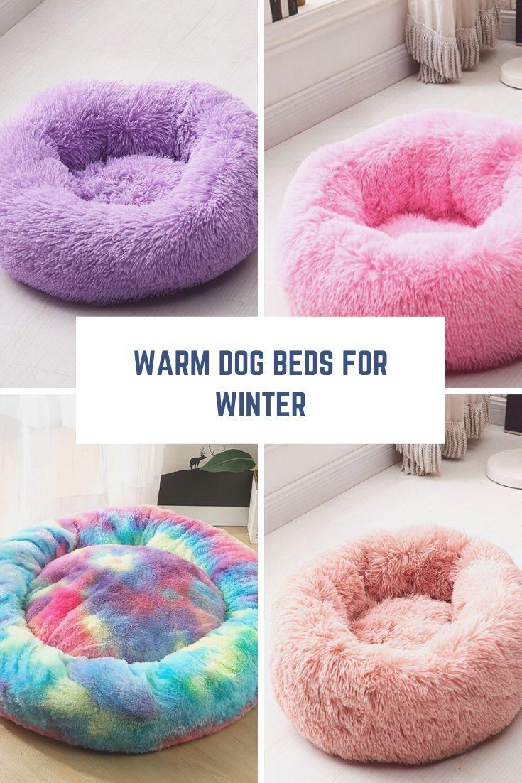 Donut Dog Bed Donut Pet Bed Donut Calming Pet Bed Plush Donut Dog Bed Dogmega Com Warm Dog Beds Cute Dog Beds Donut Dog Bed
