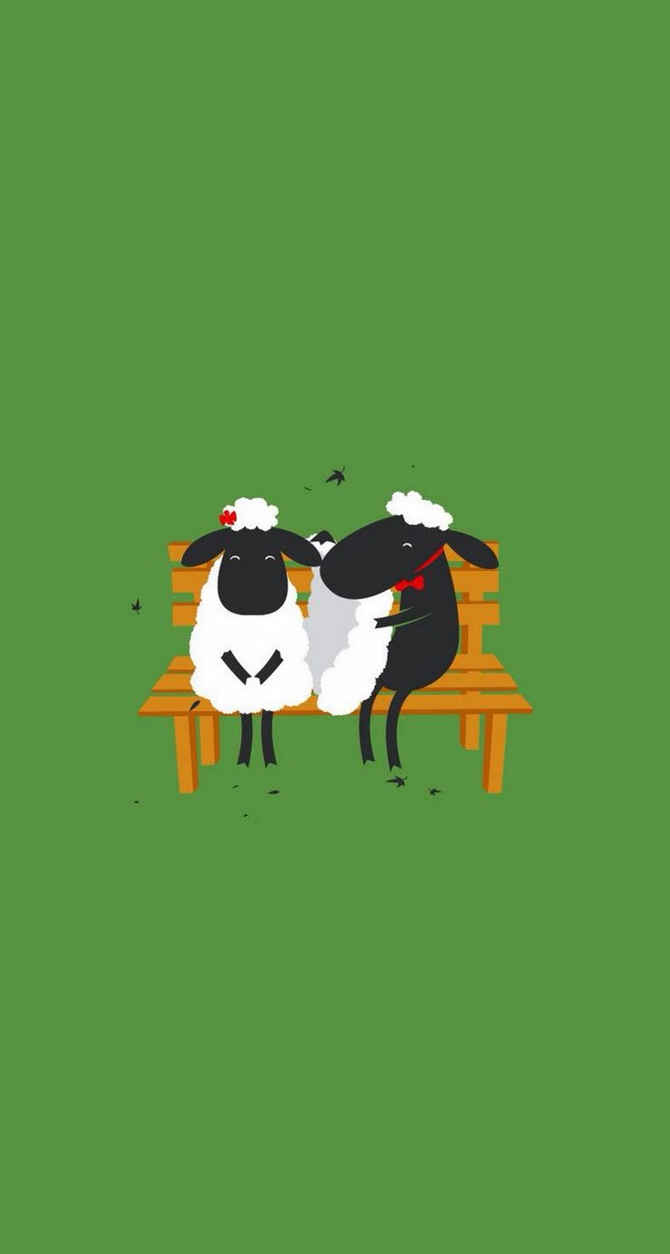 iphone funny wallpaper sheep amp iphone wallpapers mobile9 7546