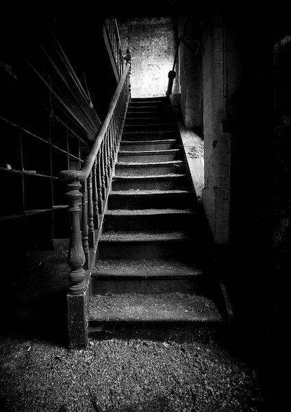 Blanc et Noir photographie