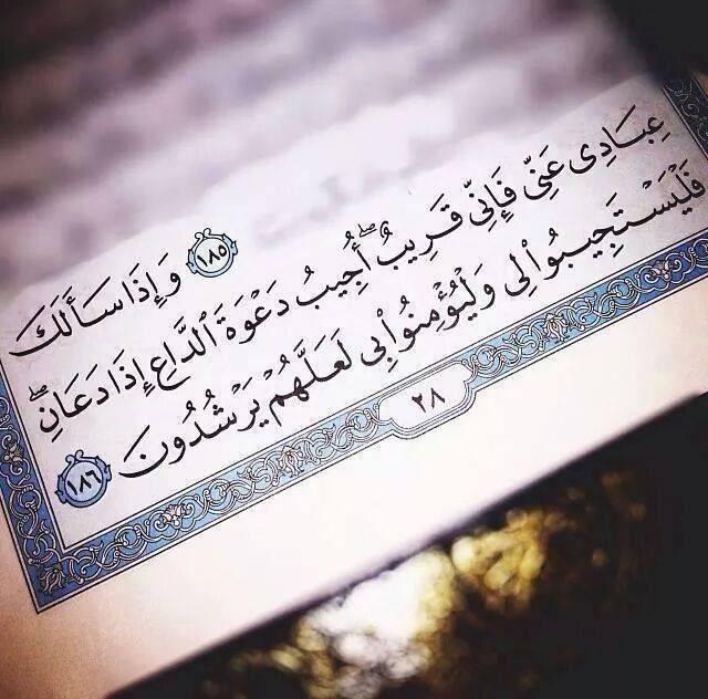 مـگتبتي Quran Quotes Love Quran Learn Quran