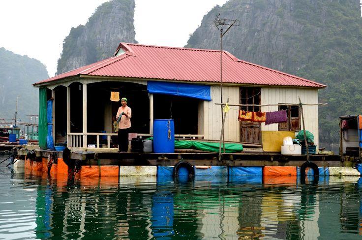 La Baie d'Halong Maritime.  Visite d'un village de pêcheur, au milieu des pains de sucre, avec la compagnie Indochina Junk.