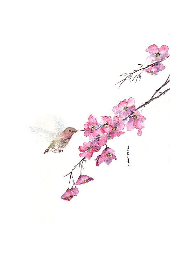 suni watercolor cherry blossom | Cherry Blossoms
