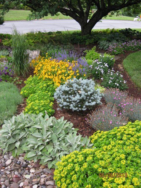 Tree Flower Bed : Flower Beds