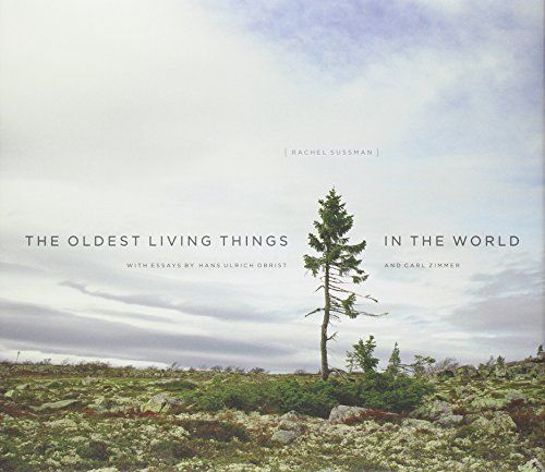 Oldest Living Things in the World #Design