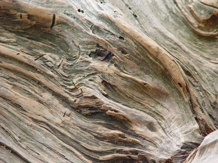 Wooden Post Texture 51 best wood images on pinterest | textures patterns, wood texture