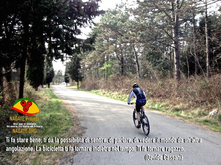 Ti fa stare bene, ti dà la possibilità di sentire, di parlare, di vedere il mondo da un'altra angolazione. La bicicletta ti fa tornare indietro nel tempo. Ti fa tornare ragazzo. Davide Cassani