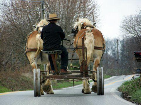 Amish farmer. See Wingspread book, Ch. 21, jimhurd.com