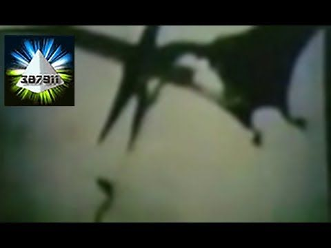 Billy Meier Time Travel Photos Dinosaur Pictures UFO Proof Pleiadian...