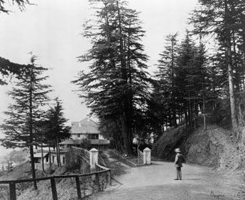 Oakover, Simla in 1863 by Samuel Bourne. #Halloween #Photography