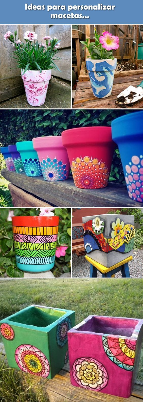Colorful plant pot ideas