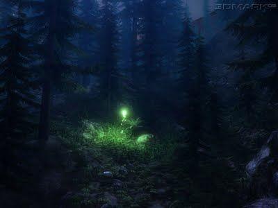 El santuario de las luciérnagas en los bosques de Tlaxcala