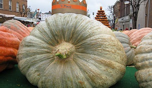 Circleville Pumpkin Show - Ohio's oldest festival and one of the largest pumpkin exhibitions in the world.