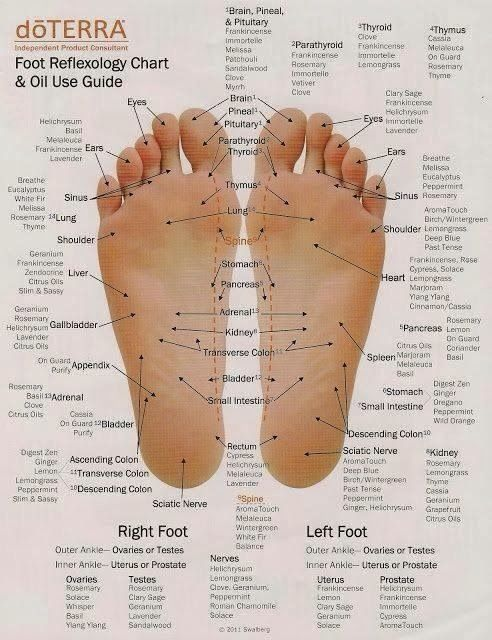 Nature's Modern Mom: Reflexology - Where do I put it?