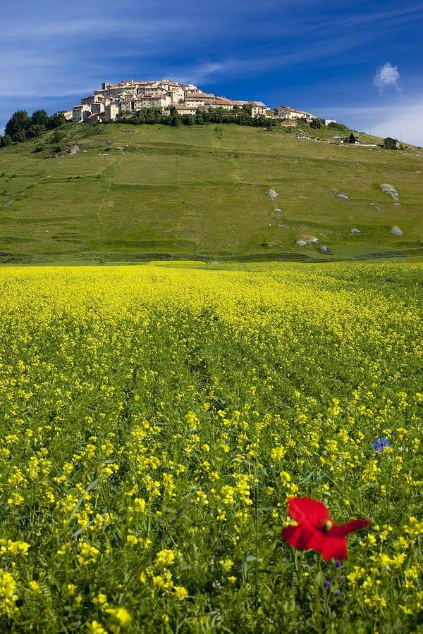Castelluccio di Norcia in Umbria, Italy - Umbrie, Italie   www.regioneumbria.eu