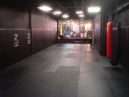Gracie fighter jiu jitsu training room