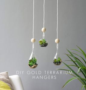 20 Ideas de terrarios DIY