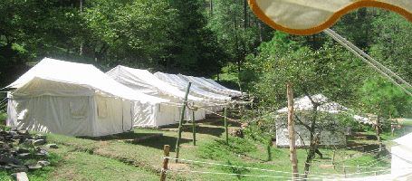 Camping In Nahan Himachal Pradesh >>>  The Nahan Campsite is one of the perfect place for camping in foothills of Indian Himalayas. Located 30 kms from Nahan (Himachal Pradesh) and 3.5 kms down from the main road, Campsite is located in the 7 kms of dense forest with Pine trees.  #Camping #FlyingFox #Rappelling #RockClimbing #Trekking