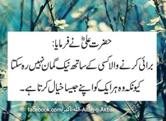 Pin by Md Imran Alam on Mula Ali ka farman | Islamic quotes