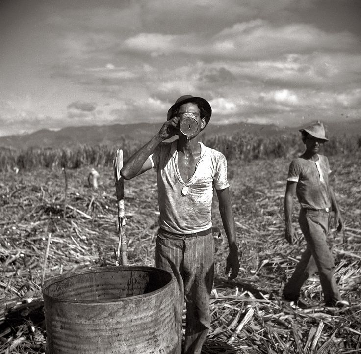 Edwin Rosskam, Agricultural workers on a sugar plantation, Water Break, Puerto Rico, 1938