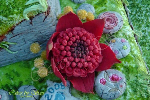 25+ best ideas about Waratah flower on Pinterest Dark ...