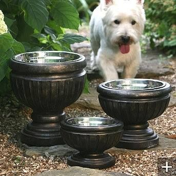Use planters to hide/upgrade outdoor pet bowls...and a better height for Lola to drink from. :)